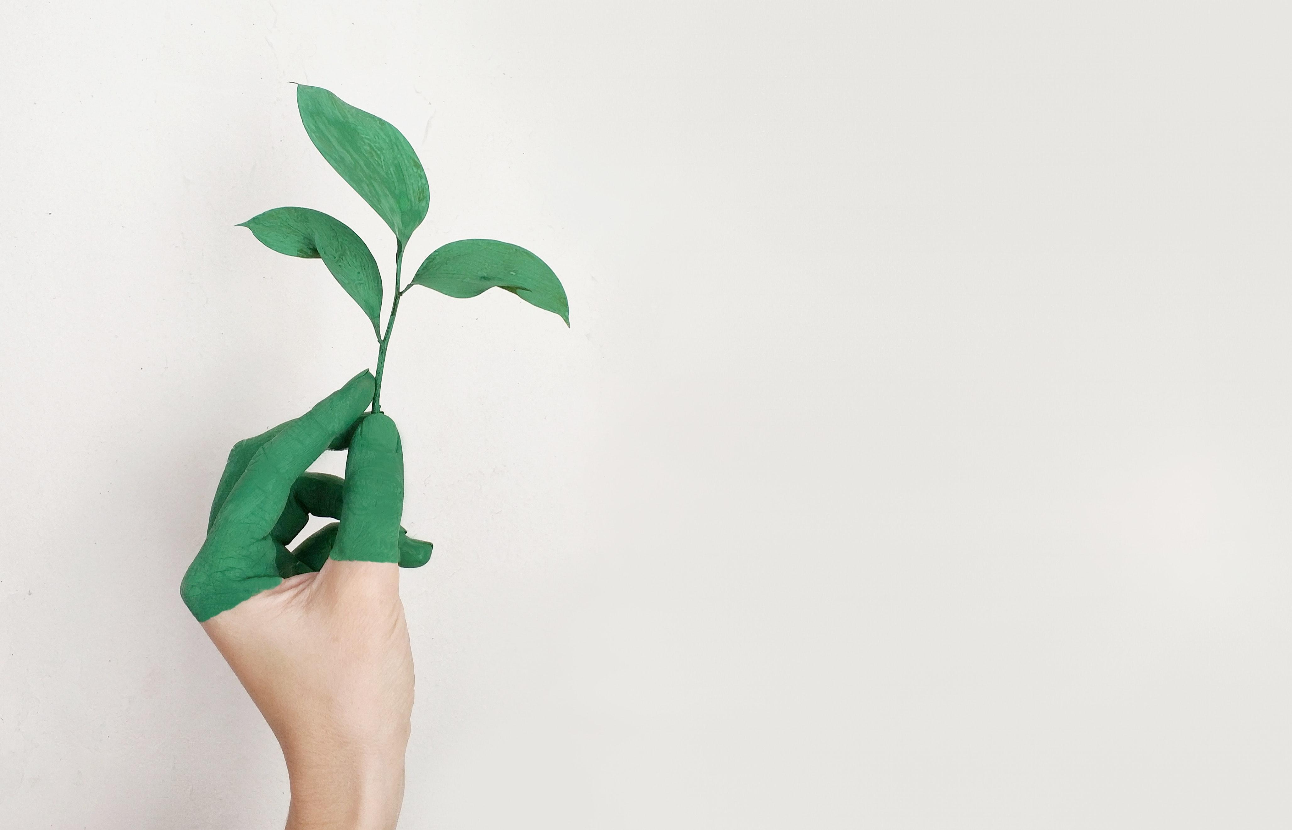 Proposta do Conselho de Usuários do Paraná para sustentabilidade da CASSI
